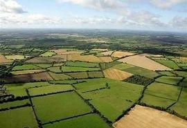 ثبت اطلاعات در سامانه پهنه بندی؛ شرط خرید تضمینی محصولات کشاورزی