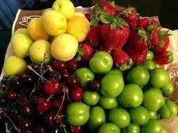 تولید 15 هزار تن میوه هسته دار در بابل