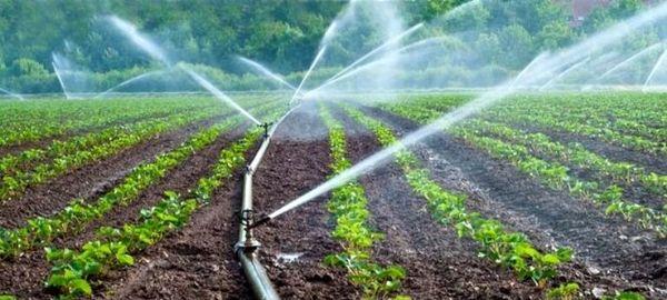 توسعه اراضی آبی در کردستان اولویت جهاد کشاورزی است