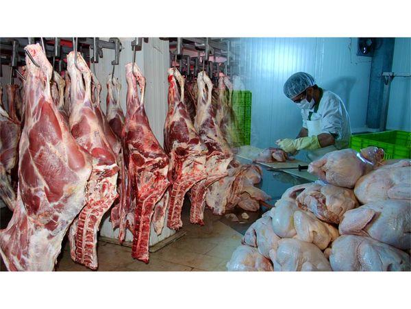 8300 تن گوشت سفید و قرمز در نوشهر تولید شد