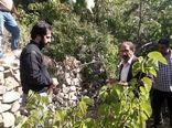آفات و بیماری های گیاهی منطقه سولقان شهرستان تهران بررسی و ردیابی شد
