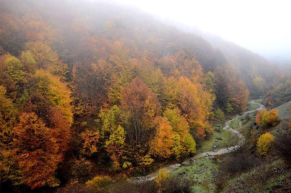 طبیعت پاییز در رودبار گیلان
