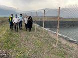 بازدید رئیس سازمان جهاد کشاورزی استان قزوین از ایستگاه پمپاژ قوشچی و مرتضانک در طارم سفلی
