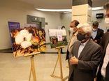 برگزاری نمایشگاه عکس و رونمایی از تمبر یادبود روز جهانی پنبه