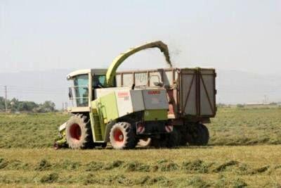 کاهش مصرف سوخت با استفاده از روشهای نوین خاکورزی
