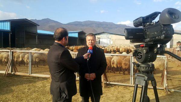 بازدید رییس سازمان جهاد کشاورزی خراسان شمالی از شرکت کشت و صنعت مفخم در شهرستان جاجرم