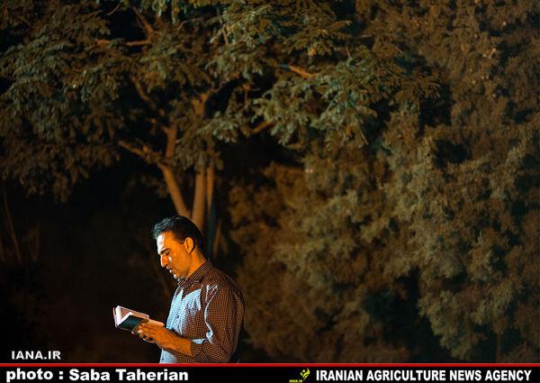 شب قدر؛پارک جنگلی کوهسار