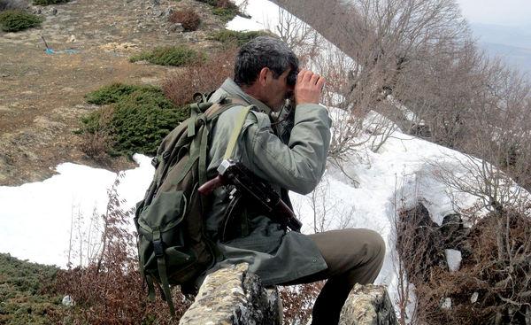 بلاتکلیفی دو ساله لایحه حمایت از جنگلبانان