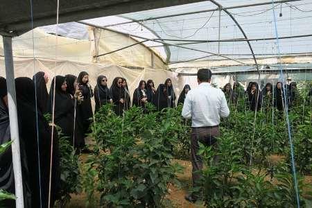 روشهای نوین ترویج کشاورزی  در زنجان
