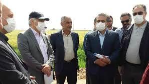 پیشبینی خرید بیش از ۱۰.۵ میلیون تن از گندم مازاد بر نیاز کشاورزان در مراکز دولتی