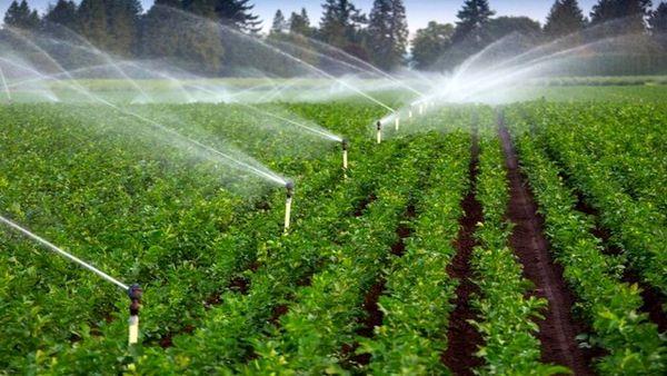 ۱۴ طرح کشاورزی در شهرستان شیروان به بهرهبرداری رسید