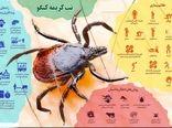 آموزش راهکارهای پیشگیری از تب کریمه – کنگو به قصابان شهرستان شهربابک