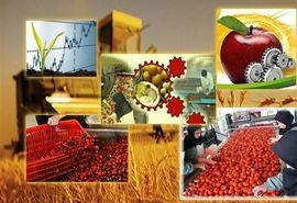 سرمایهگذاری ۵۷۰ میلیارد ریالی طرحهای صنایع تبدیلی و تکمیلی کشاورزی در سال جاری