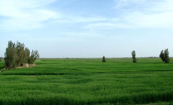 امضاءتفاهمنامه سهجانبه با هدف برندسازی محصولات کشاورزی سیستان