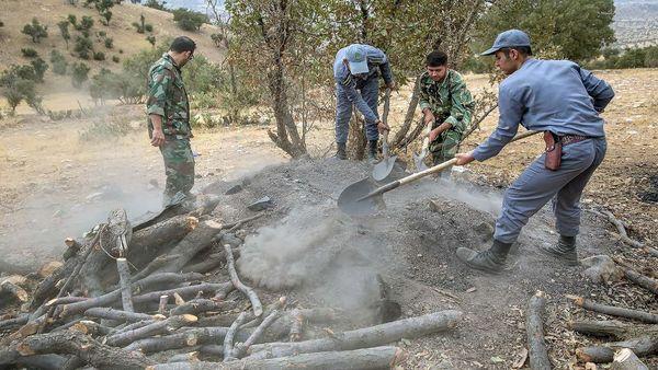 دستگیری متخلفین قطع درختان جنگلی در شهرستان لردگان