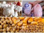 آغاز نظارت جدی بر۱۷ کشتارگاه مرغ دراصفهان