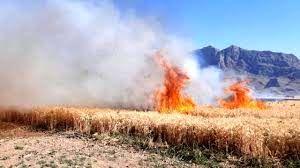 کشاورزان مراقب وقوع آتش سوزی در مزارع و اراضی کشاورزی باشند
