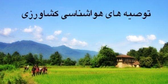 توصیه های هواشناسی کشاورزی به بهره برداران استان تهران اعلام شد