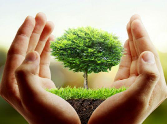 شعار امسال هفته منابع طبیعی؛ همه با هم جهاد برای حفاظت از منابع طبیعی