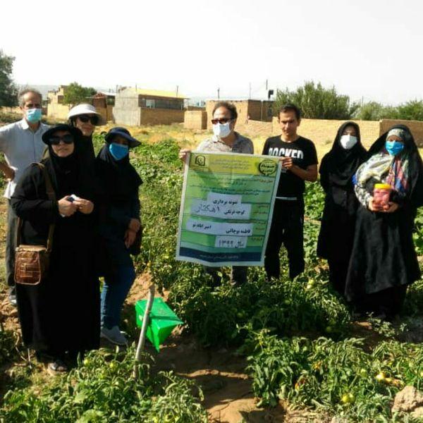 ۳ سایت تولید محصول گواهی شده ویژه زنان روستایی در شهرستان بوئین زهرا ایجاد می شود