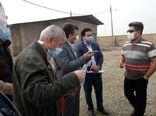 بازدید سرزده معاون وزیر جهاد کشاورزی از واحدهای پرورش مرغ ورامین