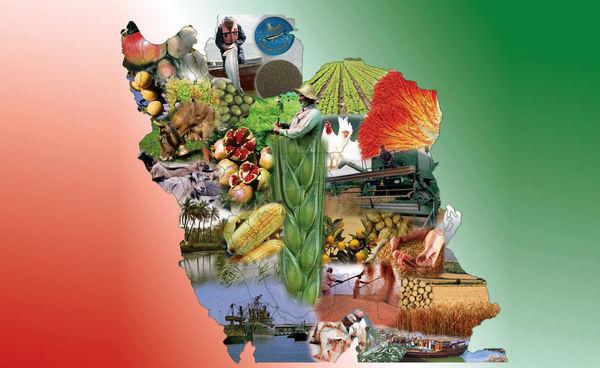 کشاورزان جهان آب میروند