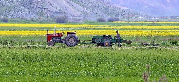 تجهیز و نوسازی اراضی در ۲۱۳ هکتار از مزارع اصفهان انجام میشود
