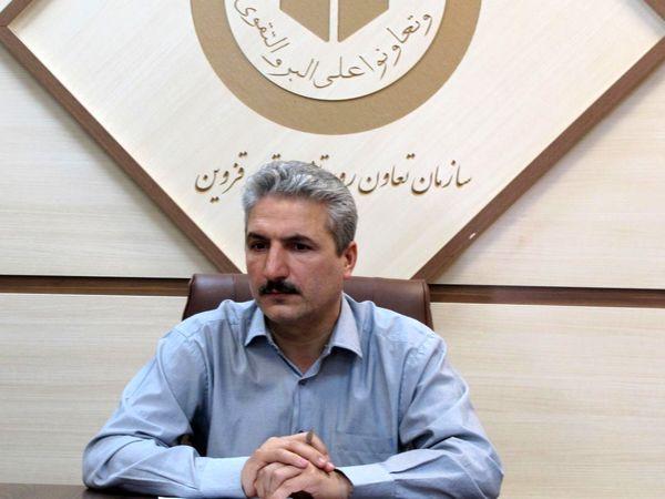 خرید تضمینی گندم در استان قزوین از اواخر خرداد ماه آغاز می شود