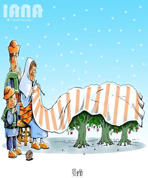 سرمازدگی بلای جان کشاورزان و باغداران-کارتون فیروزه مظفری
