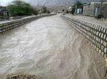 خسارت ۳۶۳ میلیاردی سیل به مزارع و باغات جنوب بوشهر