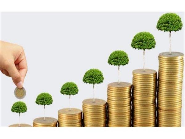 پرداخت 318 میلیاردی تسهیلات به واحدهای تولیدی کشاورزی در بابل