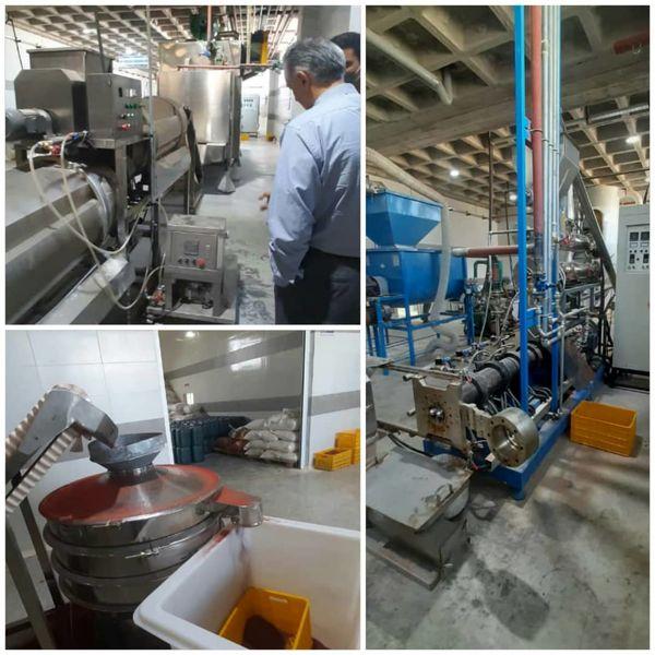 اولین کارخانه اختصاصی تولید غذای ماهیان زینتی کشور در استان قزوین