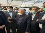 راهاندازی کارگروه پایش پیاز جنوب کرمان در وزارت جهاد کشاورزی