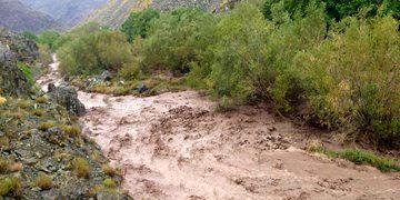 سیل و تکرگ بیش از 581 میلیارد  ریال به بخش کشاورزی خراسان شمالی خسارت زد