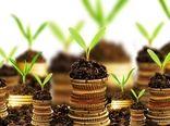 پرداخت 869 میلیارد ریال تسهیلات صندوق توسعه ملی در بخش کشاورزی استان بوشهر
