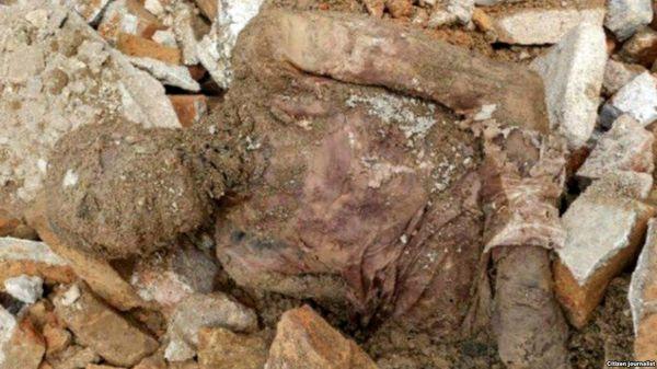 مومیایی کشف شده در محلی مناسب دفن شد