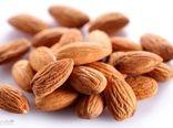 صادرات بادام از گمرک استان چهارمحال و بختیاری 368 درصد افزایش یافت