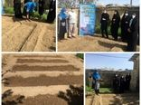 برگزاری کارگاه آموزشی ایجاد باغچه خانگی در شهر یانچشمه