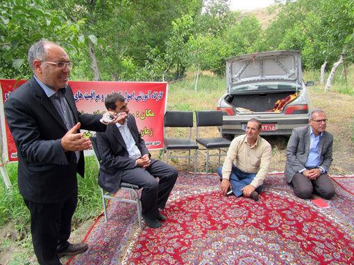 برگزاری کارگاه آموزشی مراقبت های بعد از پیوند درختان گردو در کلیبر