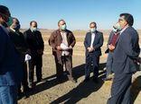 بازدید رییس سازمان از عملیات اجرایی نهضت گلخانه ای