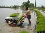 کشت مکانیزه 150 هزار هکتاری برنج مازندران