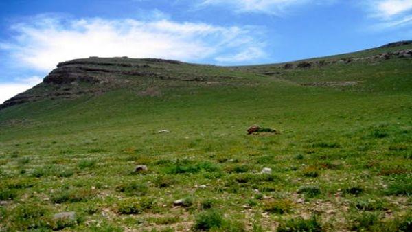 تولید علوفه در مراتع استان ۴۵ درصد کاهش یافت
