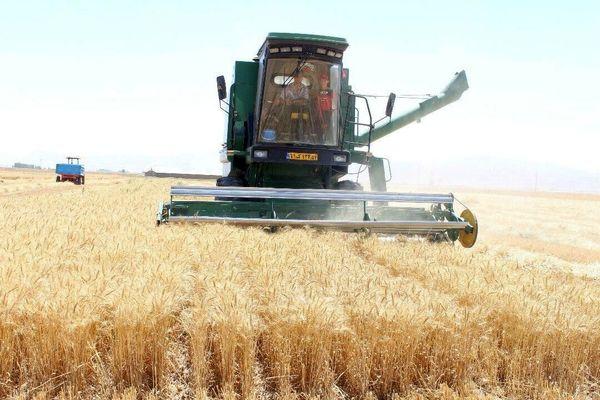 بستر لازم برای خرید گندم کشاورزان فراهم شود