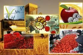 افزایش 40 میلیون تنی ظرفیت فرآوری، نگهداری و بسته بندی محصولات کشاورزی