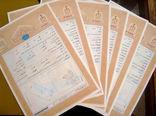 20 هزار هکتار از اراضی ملی و دولتی غرب استان تهران، در آستانه صدور اسناد تک برگ