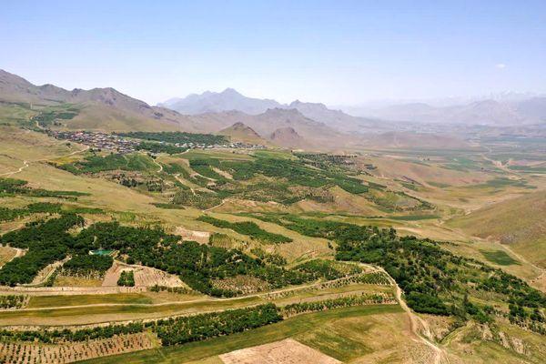 طرح توسعه باغات در اراضی شیبدار چهارمحال و بختیاری بهره برداری می شود