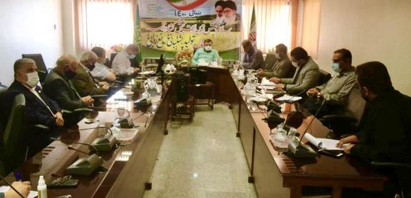 سازمان جهاد کشاورزی حلقه واسط میان کارگاه داران و تولیدکنندگان خرما در خوزستان
