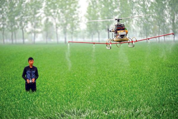 ۲۵۰میلیون شغل کشاورزی  در چین از بین میرود