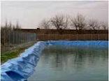 تولید آبزیان در استان کرمان به 3000 تن در سال رسید