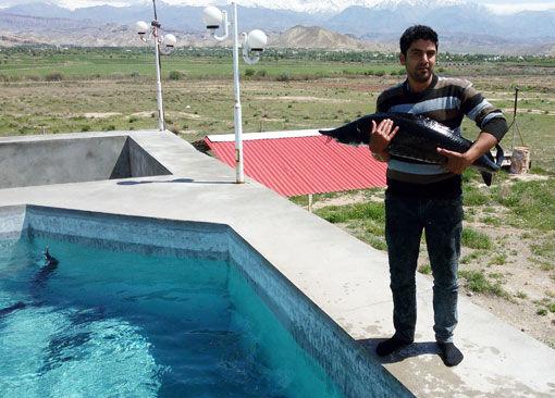 رها سازی بچه ماهی خاویاری در واحدهای پرورشی استان آذربایجان شرقی
